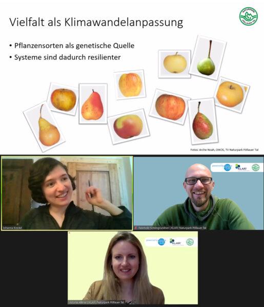 """Vortragende und Organisatoren des Webinars """"Bäume im gesunden Garten"""" [Bild: KLAR! Naturpark Pöllauer Tal]"""